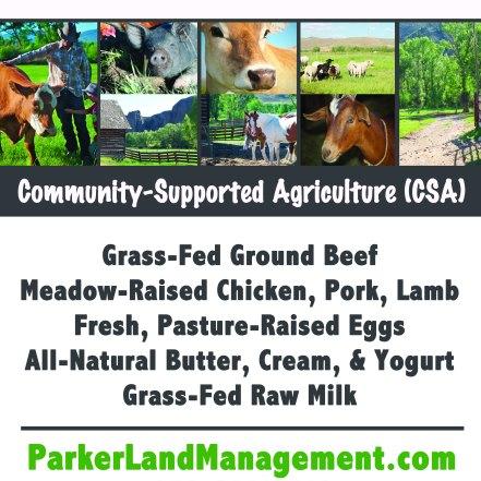Parker Pastures Poster 11x17