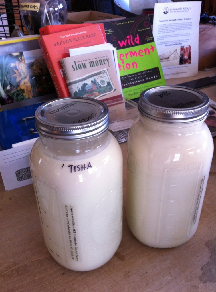 Raw Milk - Sustainable Settings
