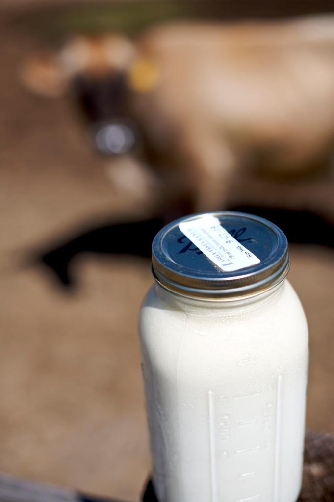 Raw Milk_1