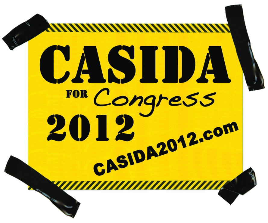 Casida for Congress - Logo Design from That's Natural! Marketing