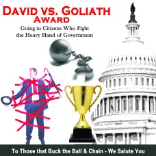 David Versus Goliath Award - Graphics from Tisha Casida