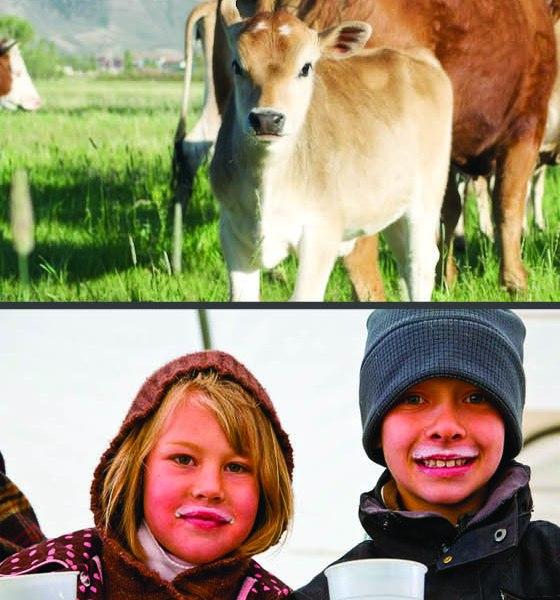 Parker Pastures Bookmark Front