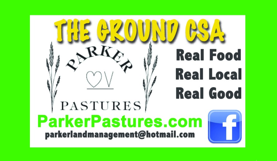 Parker Pastures Sticker_The Ground
