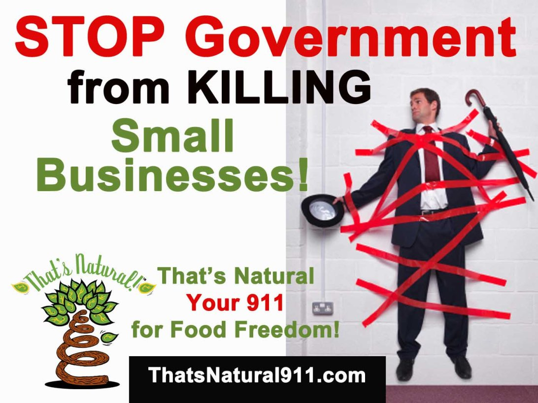 Stop Government from Killing Small Businesses