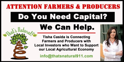 TN_Do You Need Capital_Advertisement 1
