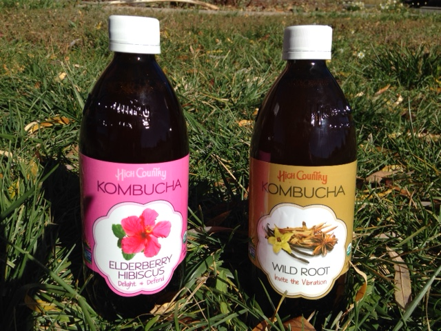 High Country Kombucha_Elderberry & Wild Root