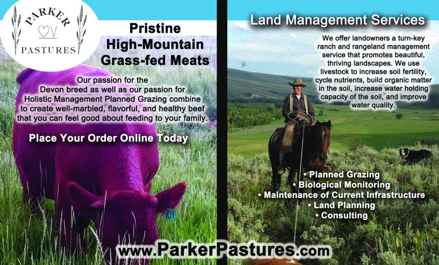 Parker Pastures - Spring Ad 2015-2