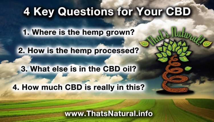 4 Key Questions to Ask about Your CBD