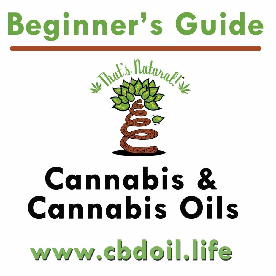 Beginner's Guide to Cannabis and Cannabis Oils