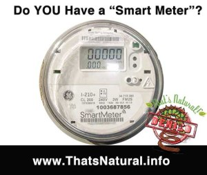 Do You Have a Smart Meter