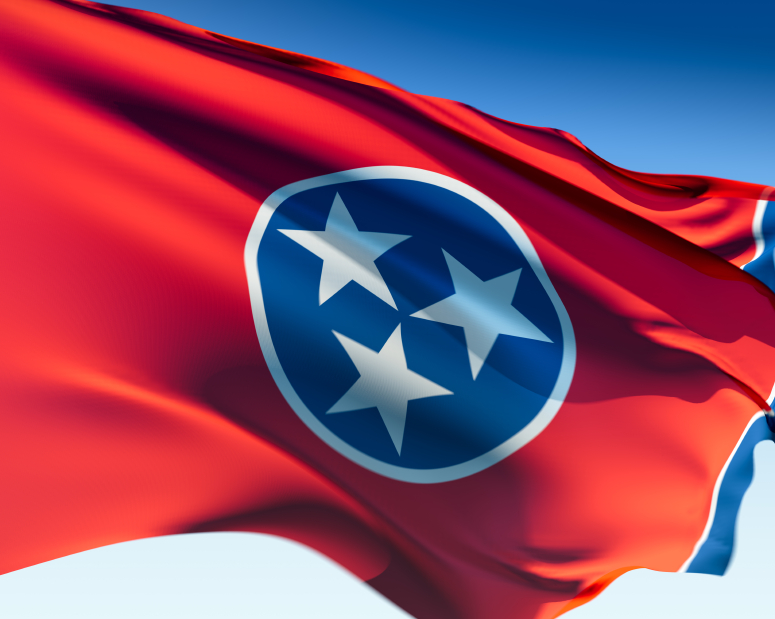 Tennessee Flag_Small