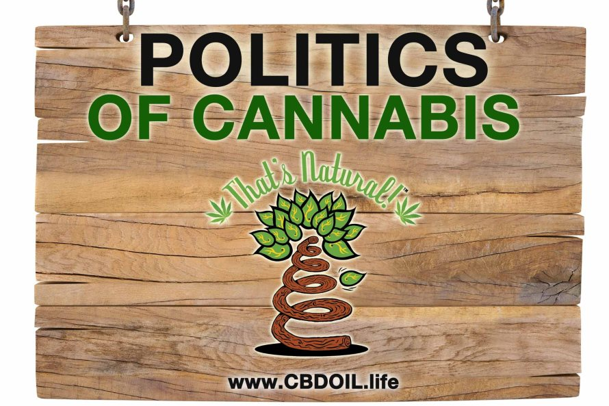The Politics of Cannabis