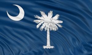 South Carolina Flag_XSmall