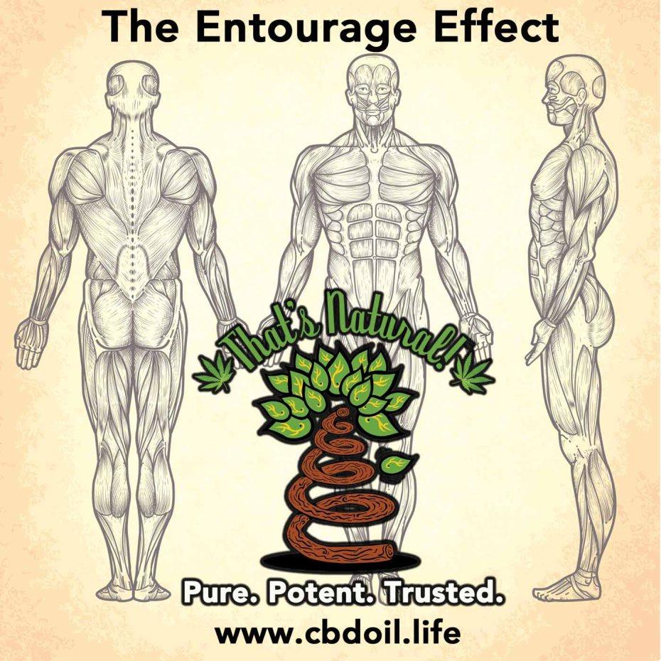 Entourage Effect 4x4 1