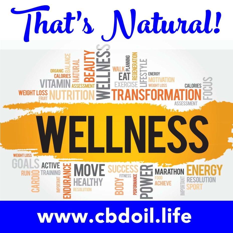 TN Wellness Word Diagram