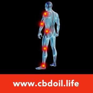 Body Inflammation-Pain V1