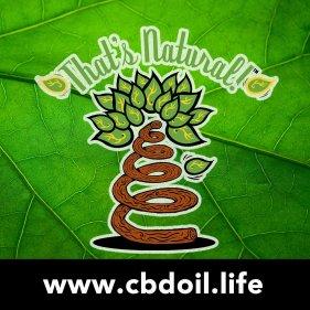 TN Logo with Leaf Background, V1