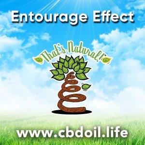 entourage-effect-with-blue-sky-background-v1