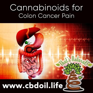 cannabinoids-for-colon-cancer-pain-v1