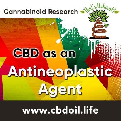 cbd-antineoplastic-agent-v1
