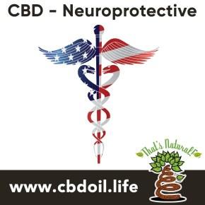 cbd-nueroprotective-v1