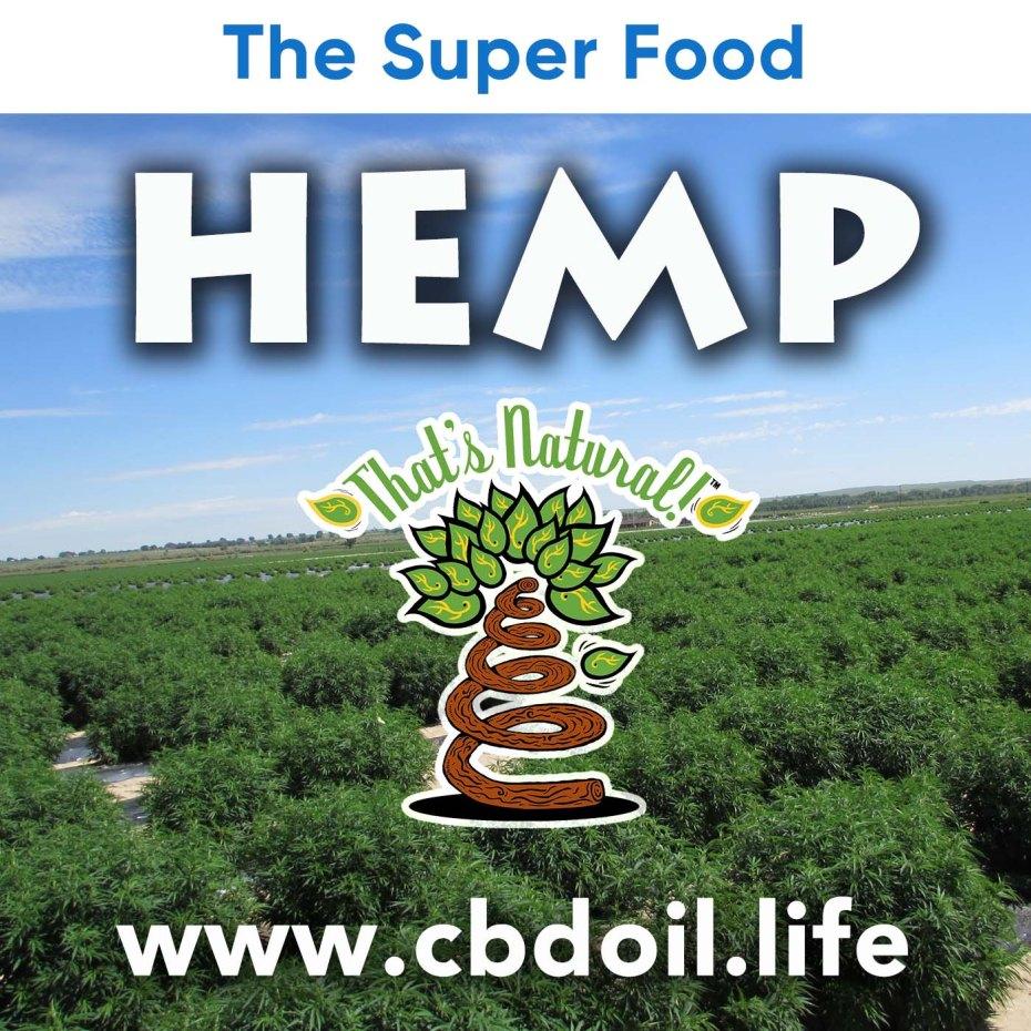 the-super-food-hemp-v1