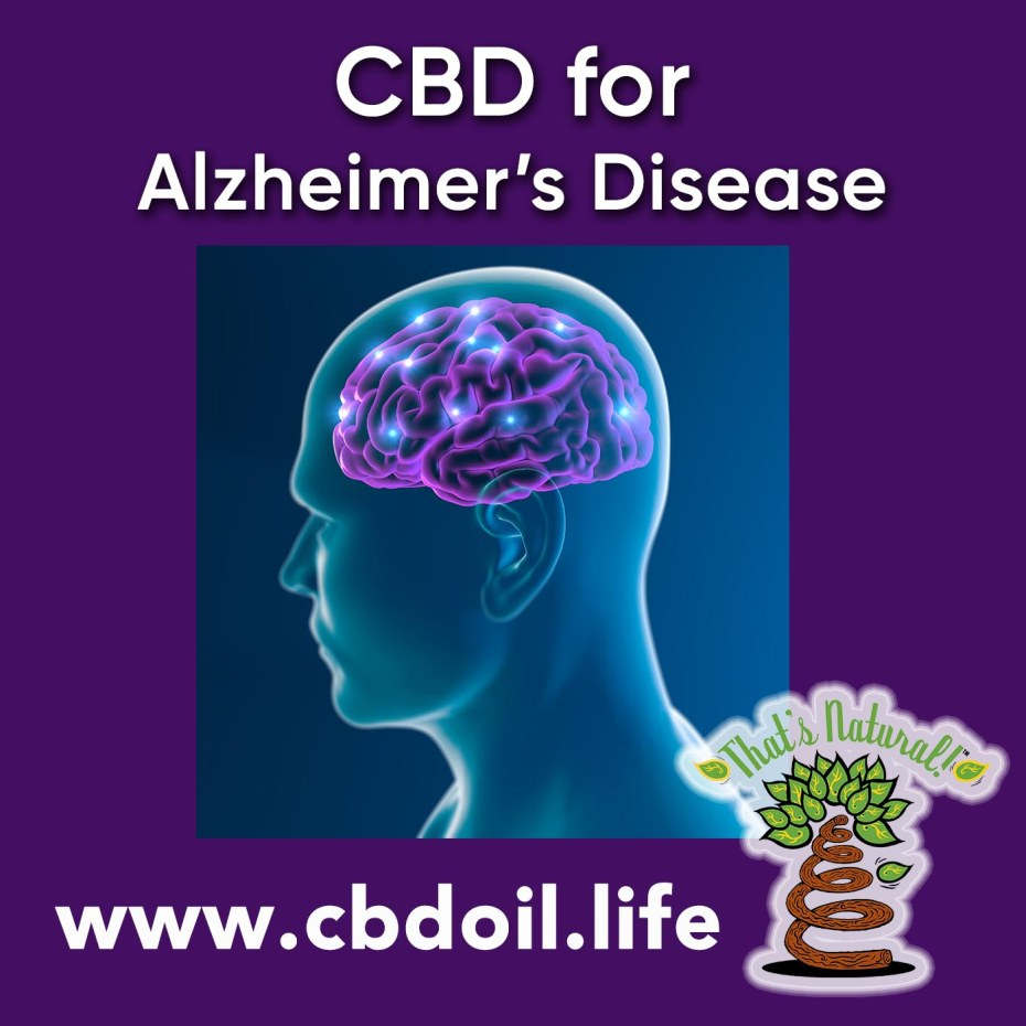 cbd-for-alzheimers-disease-v2