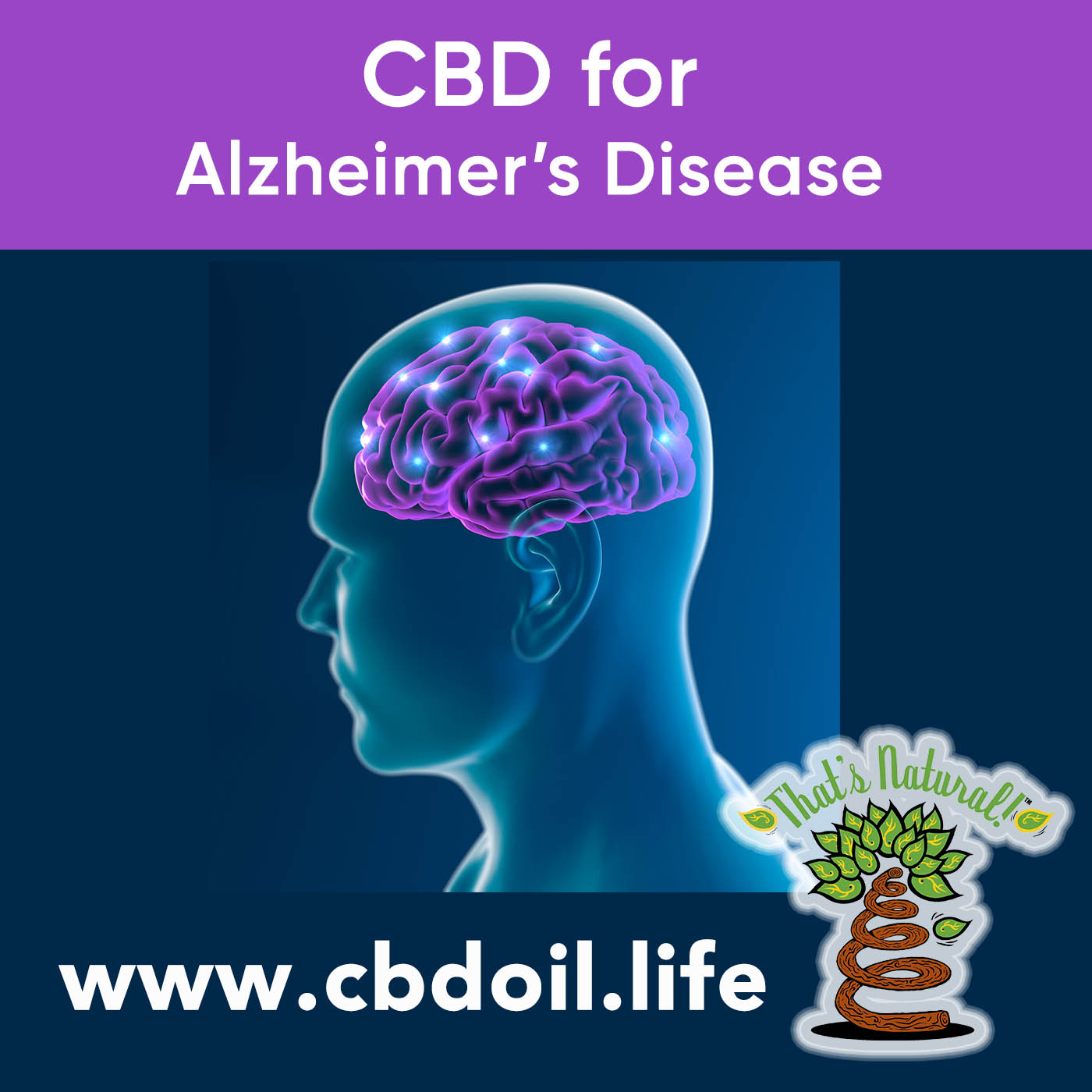 CBD for Alzheimer's Disease V3