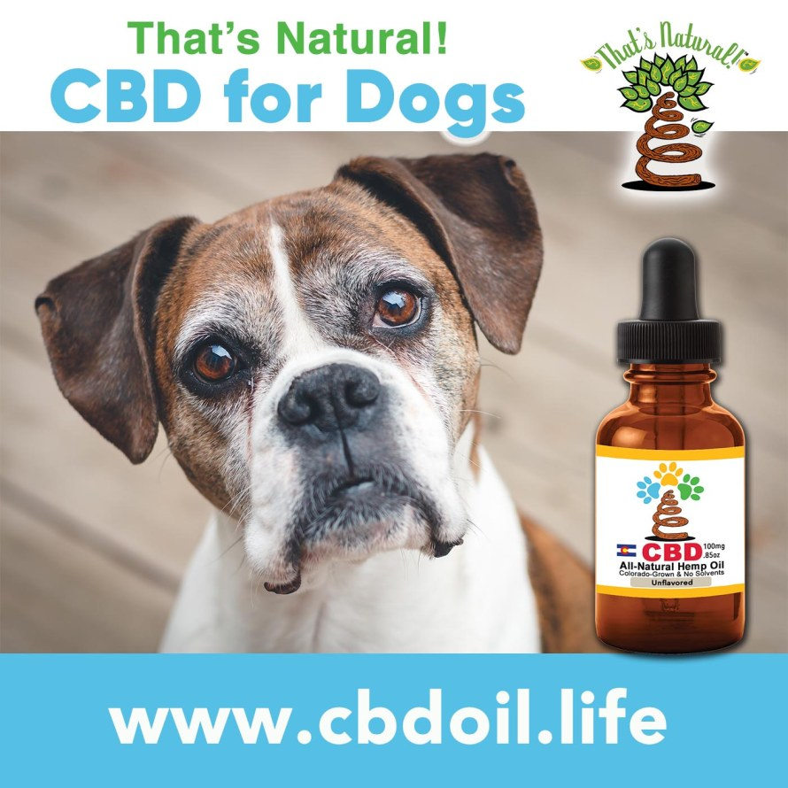 CBD for Dogs from Thats Natural - Older Doggy, V1
