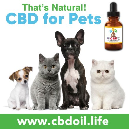 CBD for Pets from Thats Natural Dogs & Cats, V1