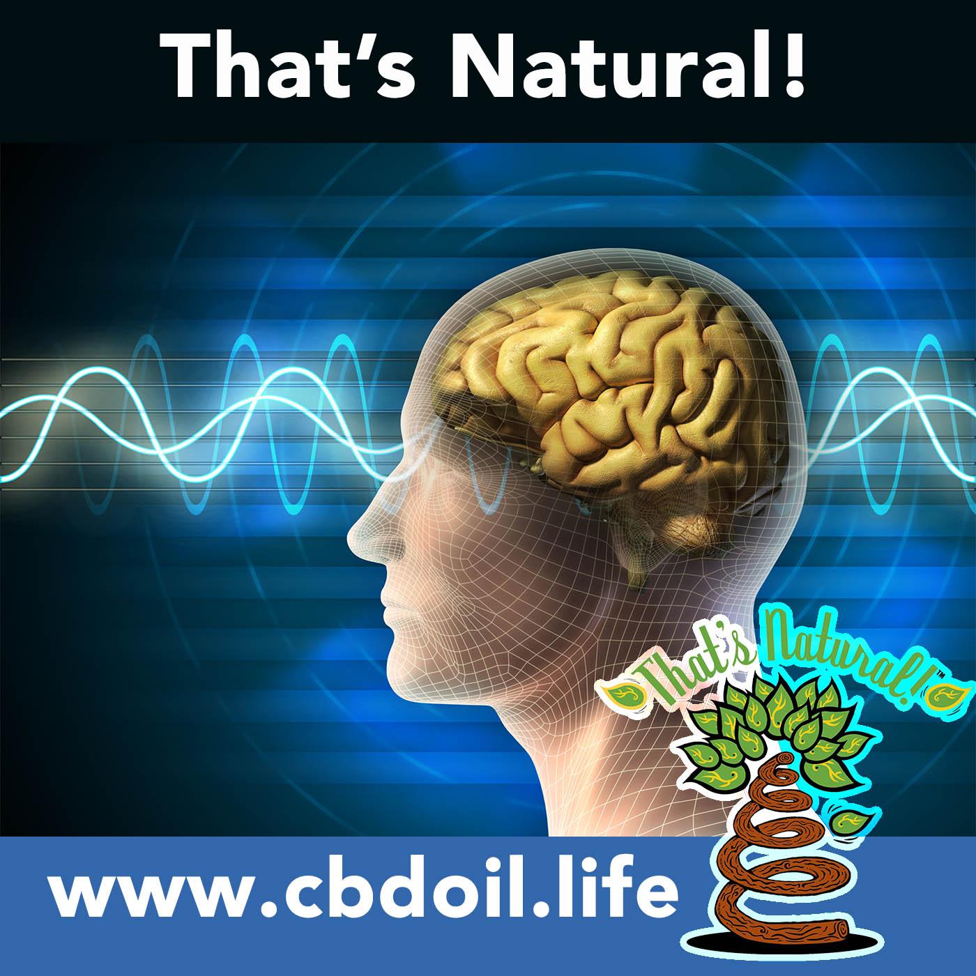 Brain Health - Full Spectrum CBD-Rich Hemp Oil from That's Natural, V1