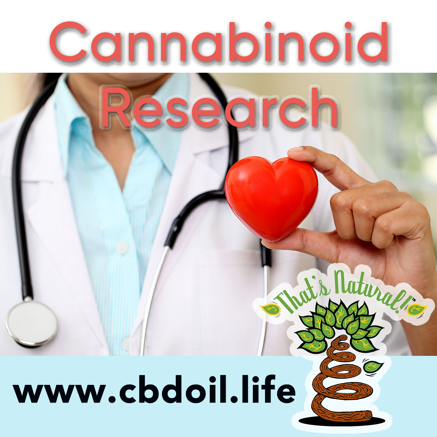 Cannabinoid Research - That's Natural Full Spectrum CBD-Rich Oil at www.cbdoil.life