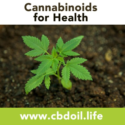 Cannabinoids for Health - Full Spectrum CBD-Rich Hemp Oil from That's Natural at www.cbdoil.life