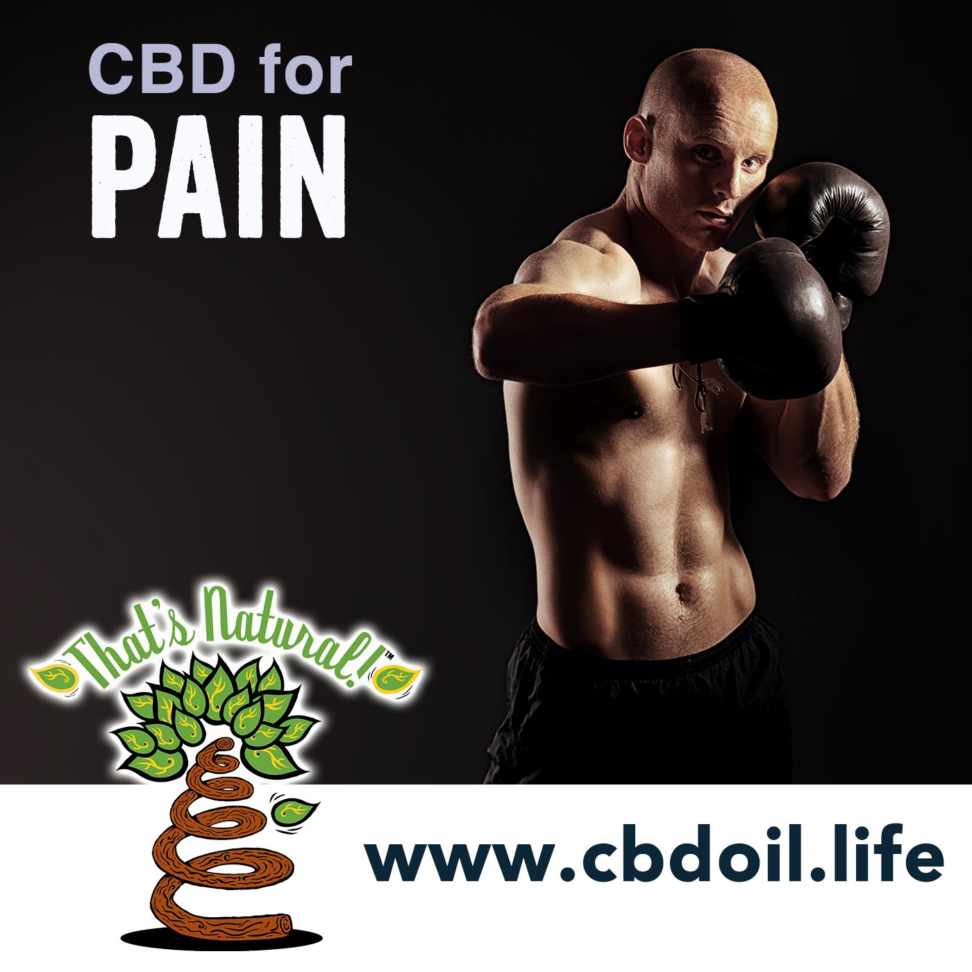 MMA and UFC Fighters - That's Natural Full Spectrum CBD Oil Products at www.cbdoil.life, V2