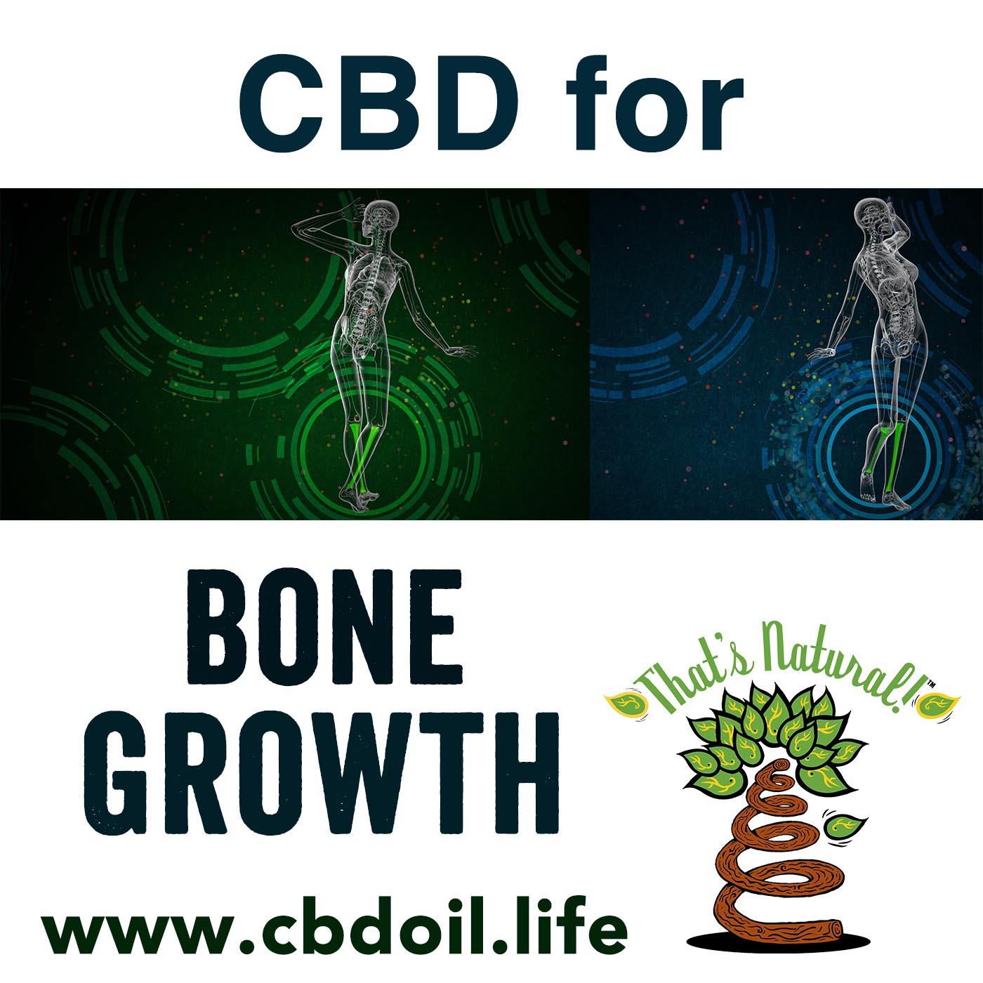 CBD for Bone Growth from That's Natural, V2