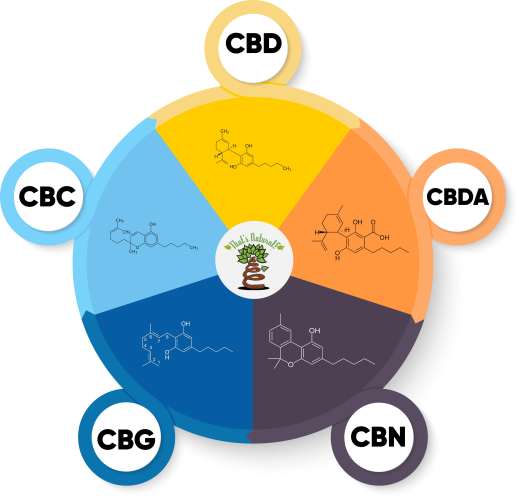 That's Natural Major Cannabinoids_Pie Chart with 5 Segments, V4 - No Verbiage